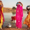 2261-8 - Women gathering water at pond, Rod Wa Khurd, Rajasthan, India