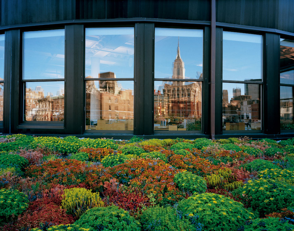 A Green Roof Of Sedums Atop An Office Building In The Chelsea Section Of  Manhattan, Cook   Fox Architects, New York, NY