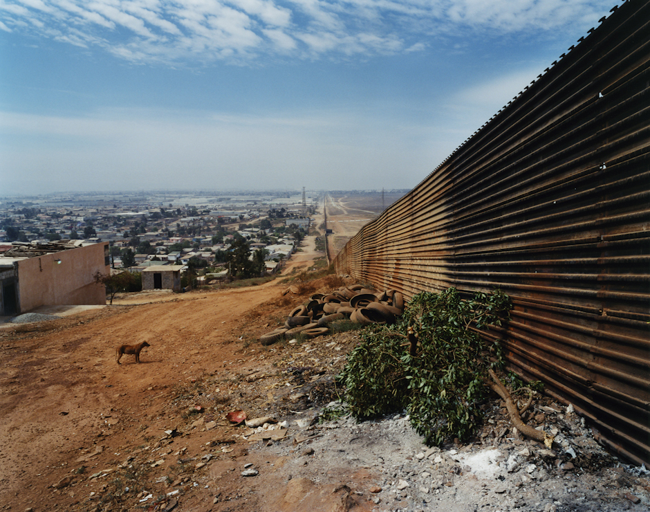 A dog on the Tijuana side of the United States-Mexico border wall faces north toward California.