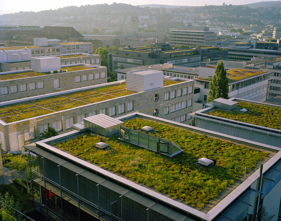 Big Valley Ford >> Green Roofs | Cook Jenshel Photography